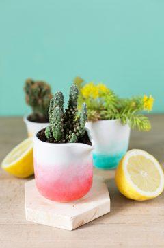 Pimpez vos pots de fleurs !